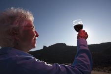 Elderly Woman Toasting A Glass Of Wine Royalty Free Stock Photo