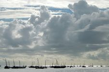 Free Boats Gathered Off The Shore Of Zanzibar Stock Images - 13714664