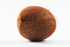 Free Coconut On White Background Royalty Free Stock Photography - 13714857