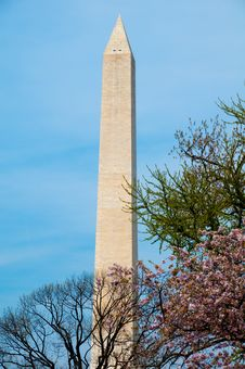 Free Washington Monument Stock Photo - 13715630