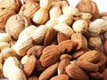 Free Nuts On White Background Royalty Free Stock Photo - 13720135