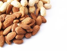 Free Nuts On White Background Royalty Free Stock Images - 13720199