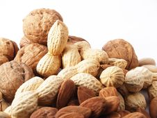 Free Nuts On White Background Royalty Free Stock Photography - 13720277