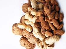 Free Nuts On White Background Stock Photo - 13720310