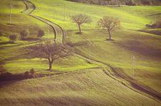 Tuscanian Landscape Stock Image
