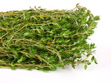 Free Garden Thyme Royalty Free Stock Images - 13720559