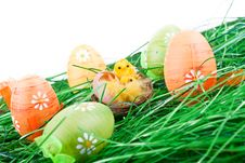 Free Easter Eggs, Chicken In Grass Stock Photography - 13724252