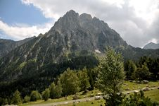 Free Pyrenees Royalty Free Stock Photography - 13725197