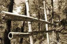 Free Bamboo Fence Royalty Free Stock Images - 13725599
