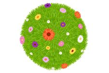 Free Grass Ball With Colourful Flowers. Vector Stock Photo - 13725900