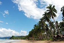 Free Tropical Beach Stock Photos - 13726623