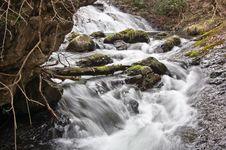 Free River Royalty Free Stock Photo - 13726645
