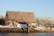 Free Stockfish In Svolvaer Royalty Free Stock Photos - 13729358