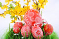Free Czech Easter Eggs Stock Images - 13732954