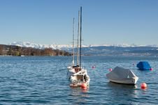 Free Zurich Lake With Alps Stock Image - 13731831