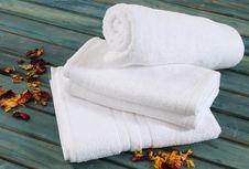 Free Bath Towel. Stock Photography - 13732982