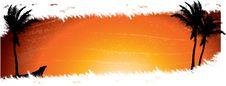 Free Tropical Sunrise Stock Image - 13733111