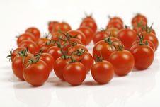 Free Tomato Stock Photography - 13733752