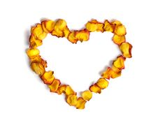 Heart Made From Rose Petals Royalty Free Stock Photography
