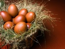 Free Nest In The Basket Stock Image - 13735531