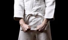 Free Karateka Royalty Free Stock Images - 13736499