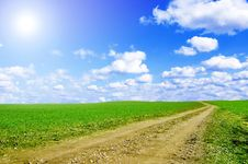 Free Green Field And Blue Sky Conceptual Image. Royalty Free Stock Photography - 13737937