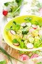 Free Potato Salad With Radishes Royalty Free Stock Photos - 13743338