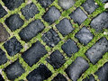 Free Cobble Road Royalty Free Stock Photos - 13748048