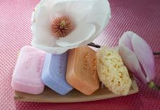 Free Soaps, Flower And Sponges Stock Photos - 13740183