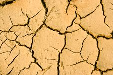 Free Drought Royalty Free Stock Photography - 13741387