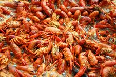Free Crawfish Boiling Royalty Free Stock Photo - 13741395