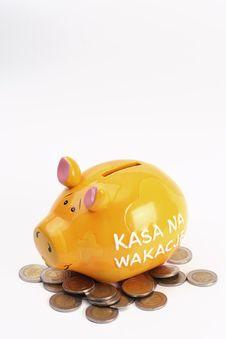 Free Piggy Bank Stock Photo - 13741730