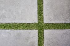 Free Lawn With Lime Royalty Free Stock Photography - 13741787