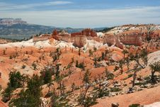 Free Bryce Canyon Royalty Free Stock Photo - 13742085