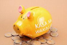 Free Piggy Bank Royalty Free Stock Image - 13742266