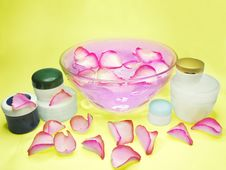 Free Spa Bowl With Rose Petals And Cremes Stock Photo - 13742660