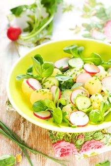 Free Potato Salad With Radishes Royalty Free Stock Photos - 13743338