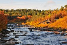 Free An Autumn At The River 10 Royalty Free Stock Photography - 13744397