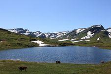 Free Norwegian Highlands Stock Image - 13745241
