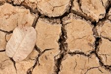 Free Broken Soil In Dry Season Stock Image - 13746111