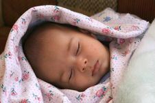 Free Newborn Stock Photography - 13746432