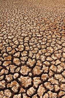 Free Broken Soil In Dry Season Royalty Free Stock Image - 13746656