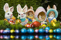Free Easter Bunnies And Chocolate Easter Eggs Stock Photo - 13754830