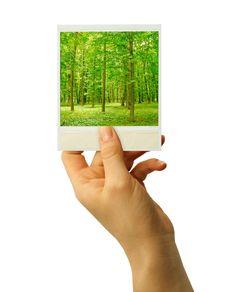 Free Card Blank Stock Photo - 13750140