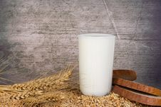 Free Milk And Grain Stock Photo - 13750330