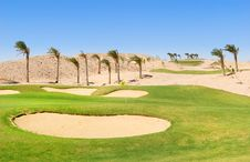 Free Egypt Golf Field Royalty Free Stock Photography - 13750597