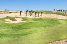 Egypt Golf Field Stock Image
