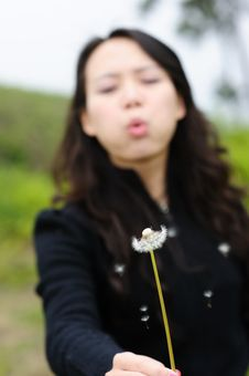 Free Asian Woman And Dandelion Stock Photo - 13750960