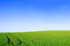 Free Green Field And Blue Sky Conceptual Image. Stock Photos - 13751393