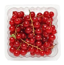 Free Red Currant Stock Image - 13751481